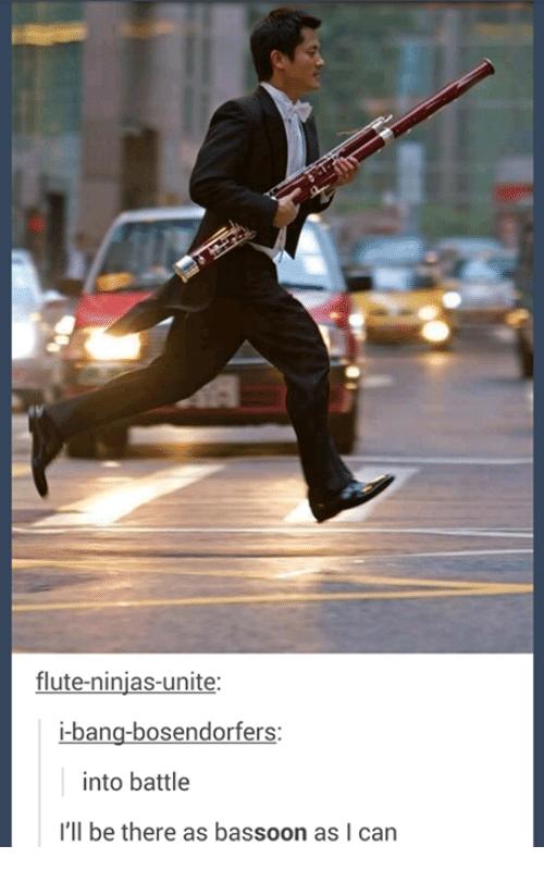 flute-ninjas-unite-i-bang-bosendorfers-nto-battle-ill-be-there-as-bassoon-as-2503619